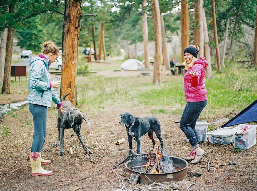 a group of friends camping with their dogs at Rocky Mountain State Park